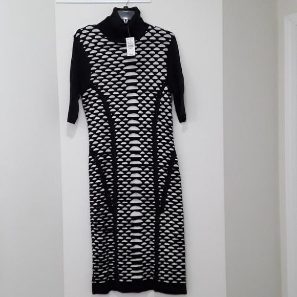 1dc194fb11b Ashley Stewart black   white turtleneck dress
